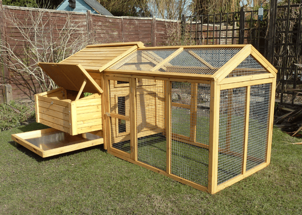 Wooden Home For Chickens