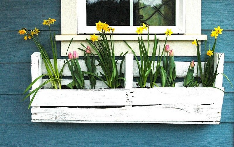Pallet Planter Boxes for Balcony