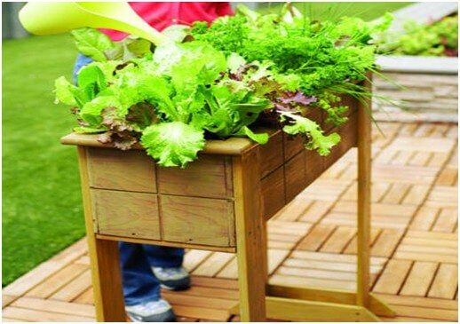 Wooden Pallet Small Sized Salad Bar