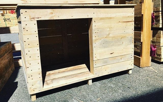 Pallet dog kennel