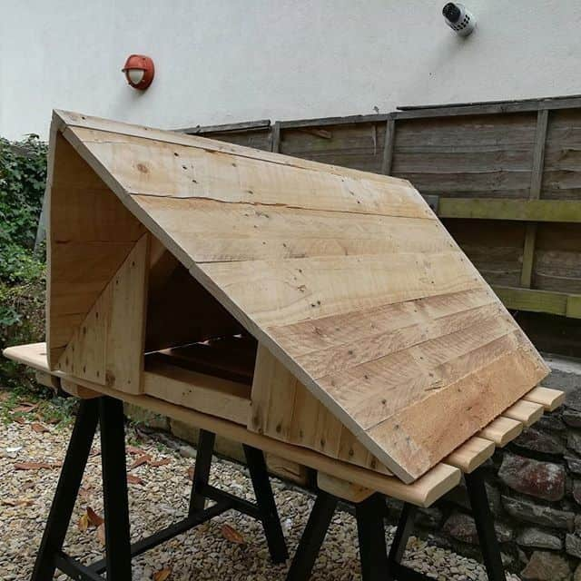 Pallet dog storage ideas