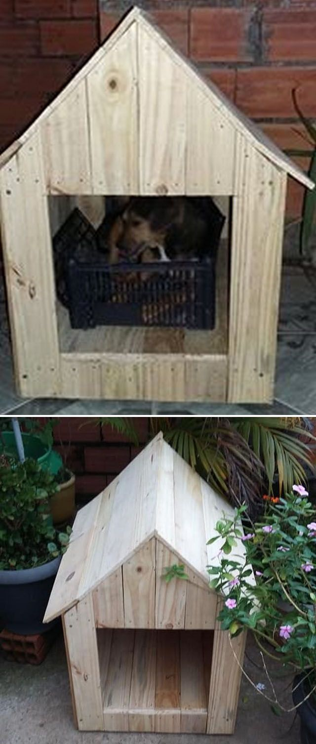 Pallet pet house ideas